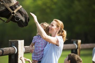 Familie besucht Pferdekoppel