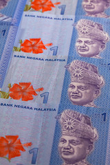 Ornament from Malaysia Ringgit banknotes