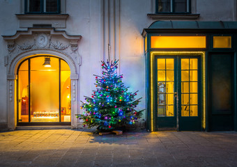 Christmas tree in Vienna
