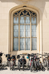 Bicycles stand in a row