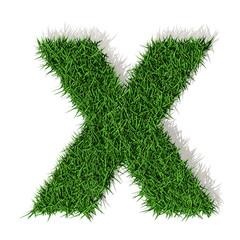 X Lettera erba verde, isolata su bianco