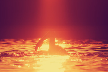 Swimming in sunset/sunrise