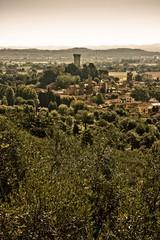 Medieval citadel of Vicopisano (Tuscany - Italy)