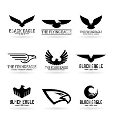 Eagles (12)