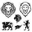 Set of lion