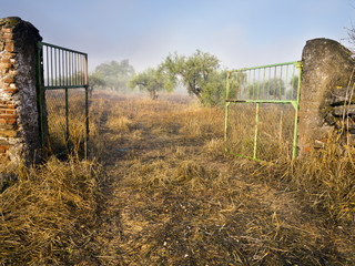 Puertas en el campo de Valverde de Burguillos. Badajoz