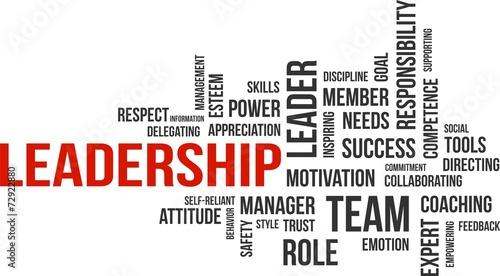 Fototapeta word cloud - leadership