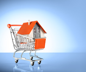 house in shopping-cart - for real estate background
