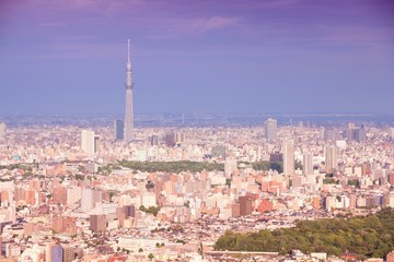Tokyo. Filtered color tone.