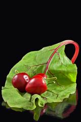 Three chillies on leaf