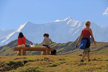 alpen in grindelwald schweiz