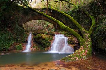Cascata nel bosco