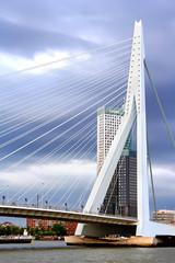 Erasmus Bridge in Rotterdam, the Netherlands