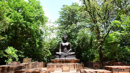 Buddha images in park, Thailand. HD