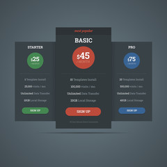 Pricing table template for hosting business with three plans. Ve