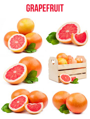 set of six compositions grapefruits isolated