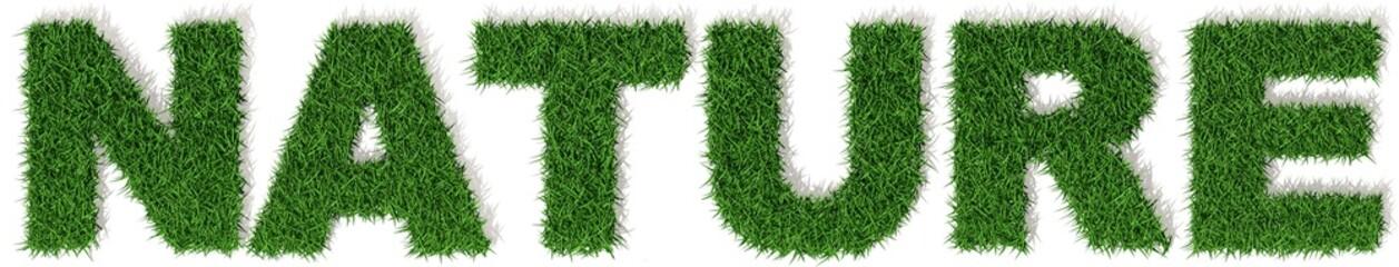 Natura lettere erba verde, scritta isolata su sfondo bianco