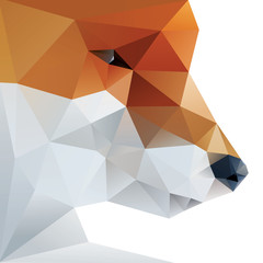 Fox abstract isolated on a white backgrou
