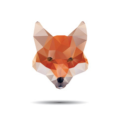 Fox abstract isolated on a white background