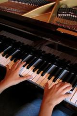 tocando el piano 1-f14