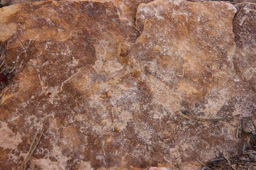 stone marmoreal texture,