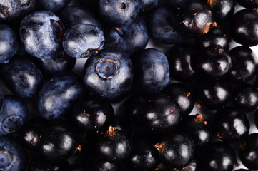 Macro closeup fresh blueberries blackcurrants background