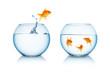 Leinwandbild Motiv goldfish in fishbowl jumps to friends