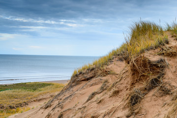 Brackley Beach Sand Dunes