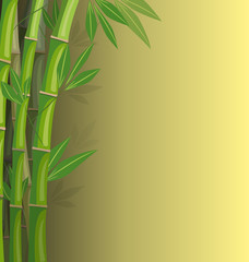 Green bamboo on yellow background with shadows