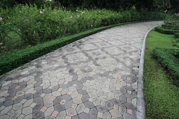 footpath in the garden