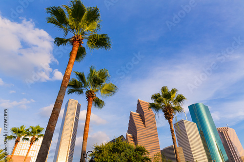 Poster Texas Houston Skyline North view in Texas US