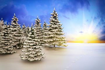 winter landscape - shot 3