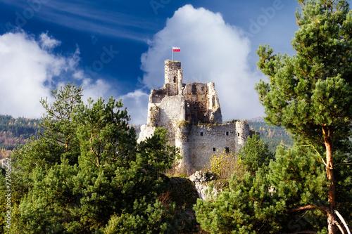 Mirów Castle - 72965652