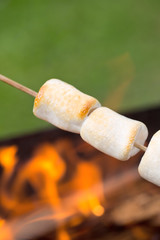 Roasted Marshmallows