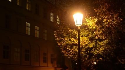 night urban street - lamp, tree- night exterior vintage building