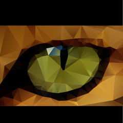 Tiger eye cubist concept
