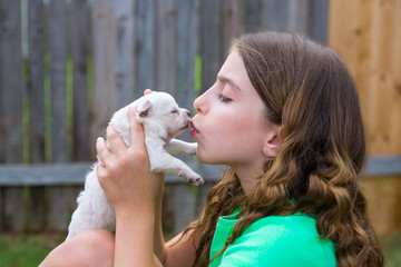 Girl playing kissing puppy chihuahua pet dog