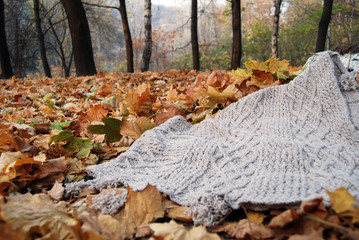 Knitted carpet in autumn park