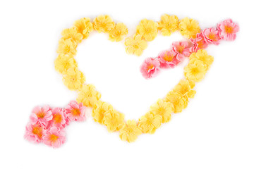 Yellow flowers in form of heart