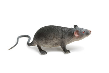 Toy rat isolated on white background