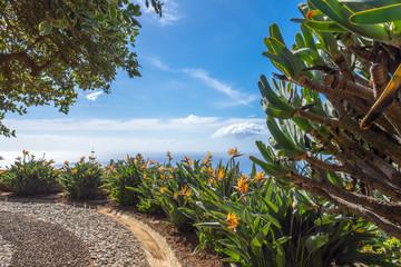 Meerblick Madeira Funchal