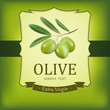 Vector decorative olive branch.For label, pack.