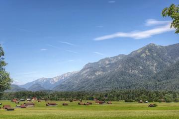 Garmisch-Partenkirchen, Almwiese...