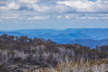 Australian Alps and Native Bush at Mount Buffalo National Park