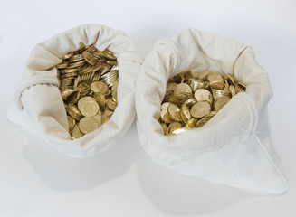 Bags of coins on white background
