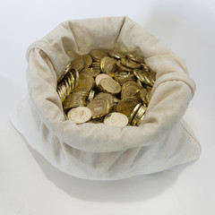 Bag of coins on a white background