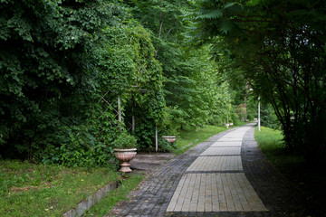 park alley with bushes and stone vase