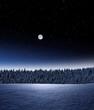Verschneiter Wald bei Nacht
