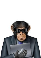 Smartmonkey-Laptop-Sonnenbrille