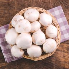 raw mushrooms champignon - agaricus bisporus